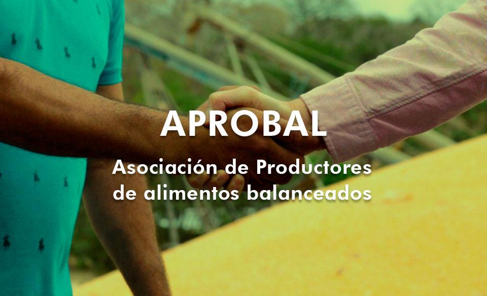 Aprobal1