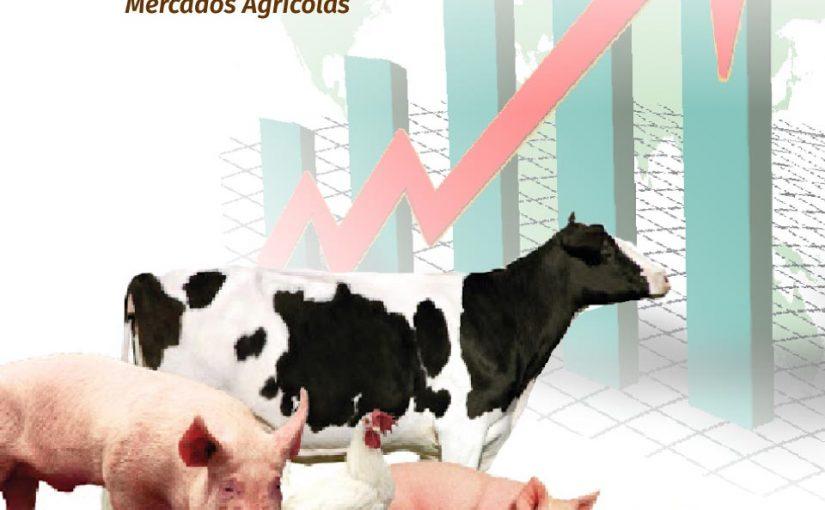 LA PRODUCCIÓN DE PROTEÍNA ANIMAL ESTE AÑO CRECERÍA 2.4%, REPORTARON DESDE EL GRUPO CONSULTOR DE MERCADOS AGRÍCOLAS